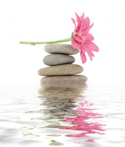 therapeutic zen / spa stones with flowers isolated